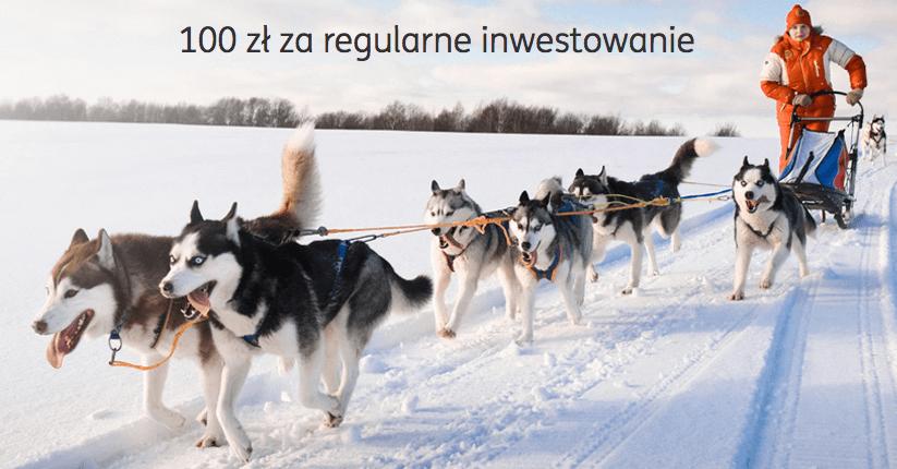 100 zł premii za regularne inwestowanie w ING